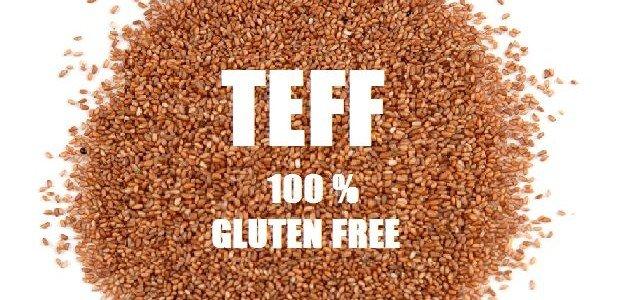 Teff, il cereale più piccolo del mondo 100% senza glutine.