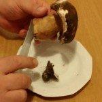 Funghi Porcini in Padella4