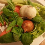 Cebolla,ajo,zanahorias,apio,Albahaca